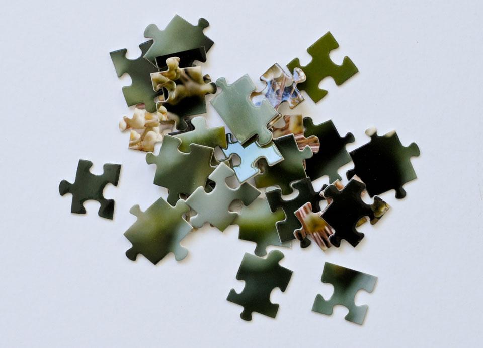 eden, puzzleteile