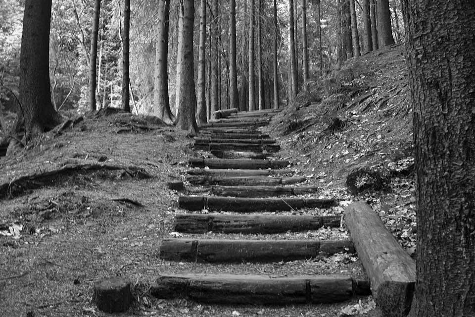 purgatory, treppe